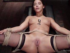 Sweet hottie Abella Danger gets her holes drilled by a stranger
